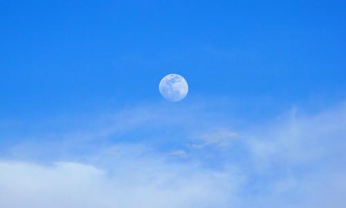 為什麼有時候白天也能看到月亮?